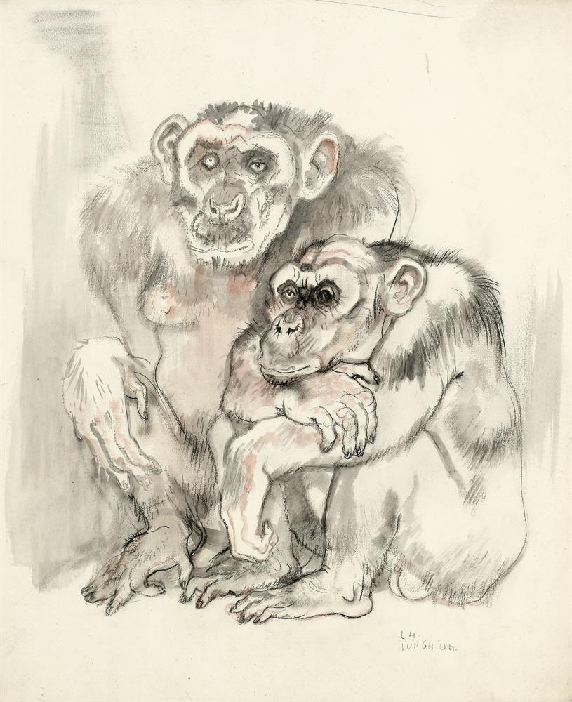 Schimpansenpaar