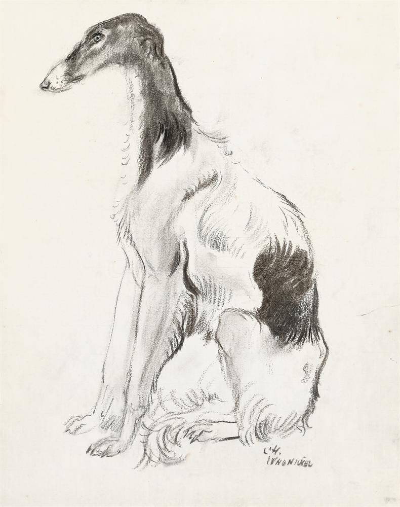 Windhund