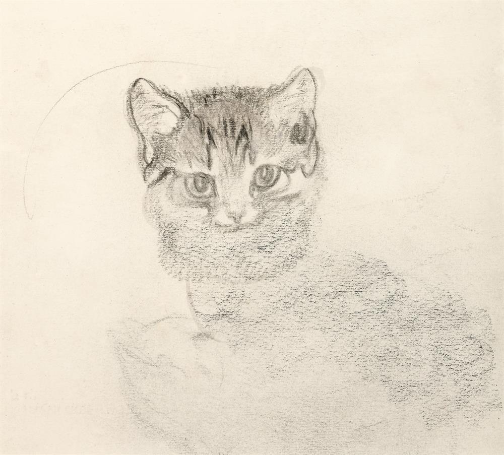 Katzenstudie