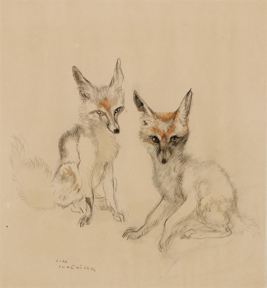 Zwei Füchse