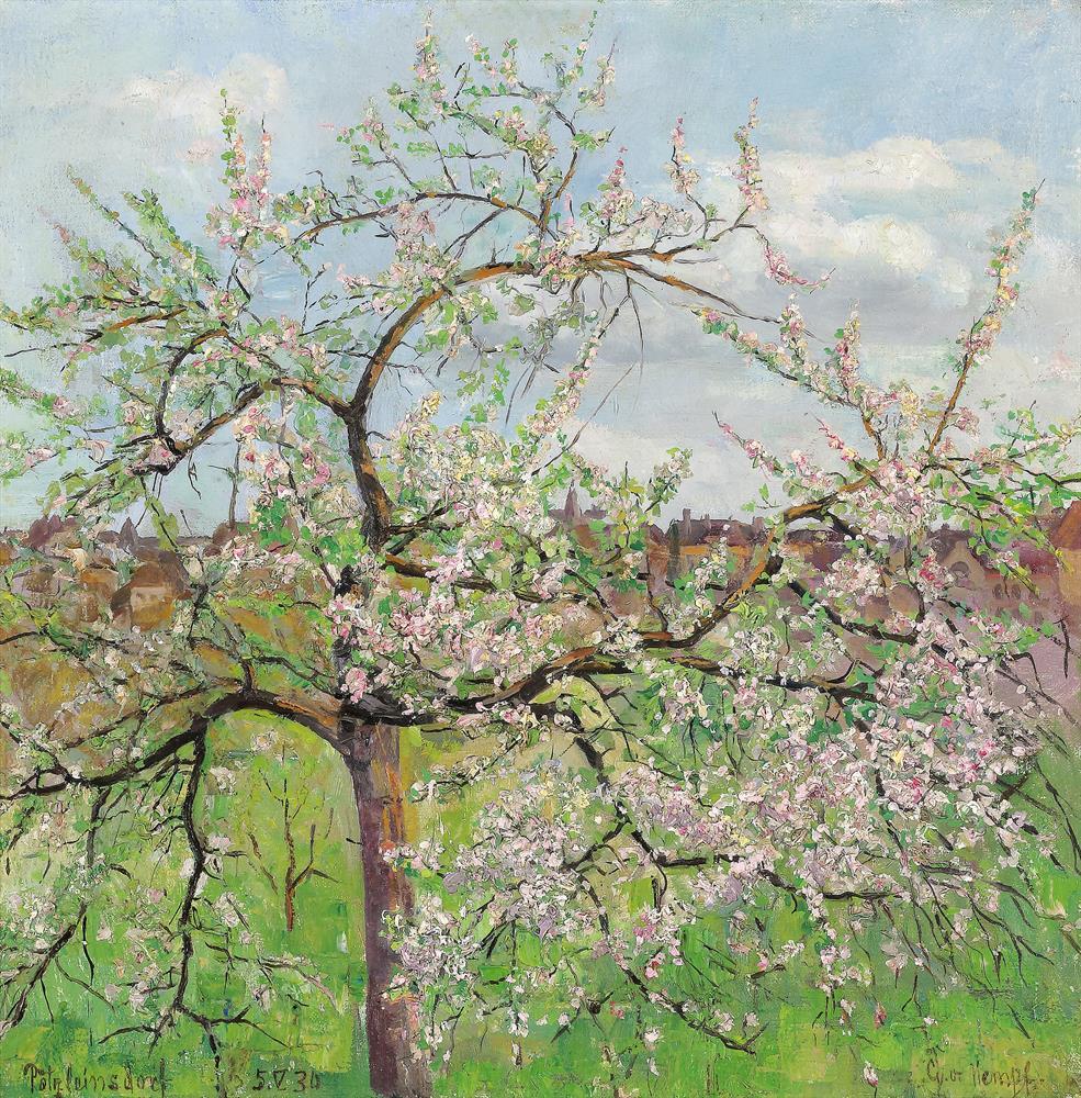 Frühling in Pötzleinsdorf