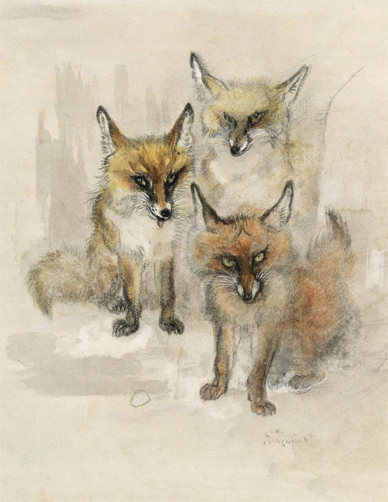 Drei Füchse